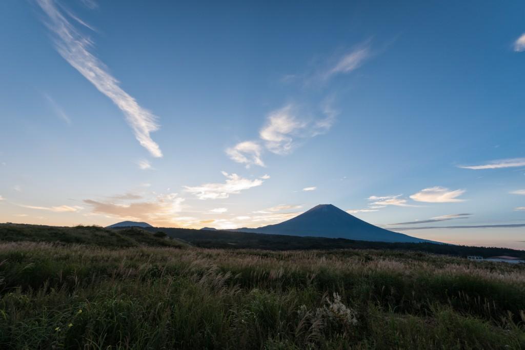 Yuga Kurita Sunrise Asagiri Plateau oenothera tetraptera_4E00850
